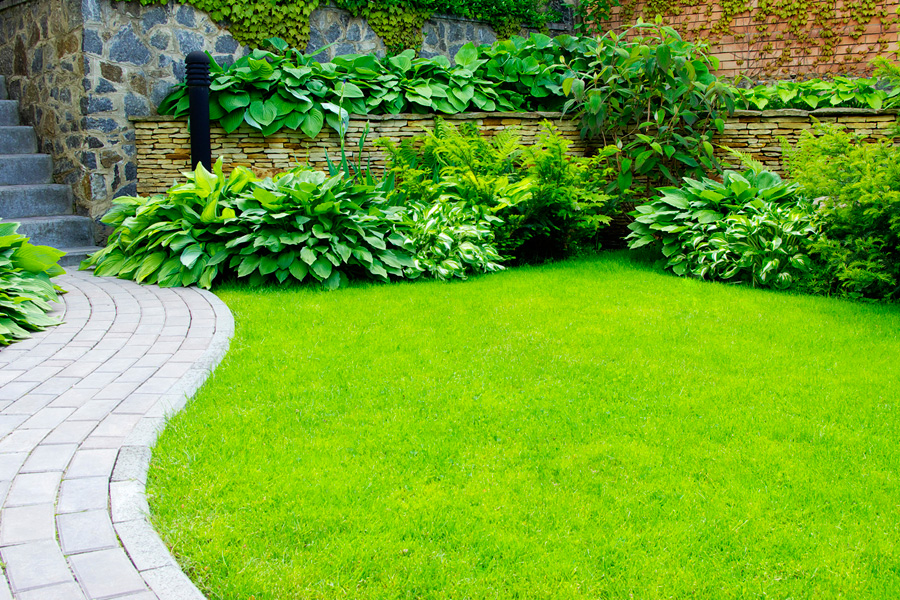 Artificial & Synthetic Grass in Sydney by Alex Paving